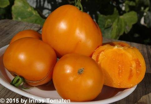 Altajskij orangevij