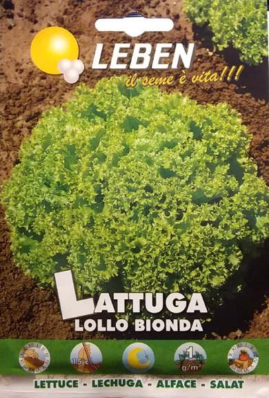 Pflücksalat Lollo bionda