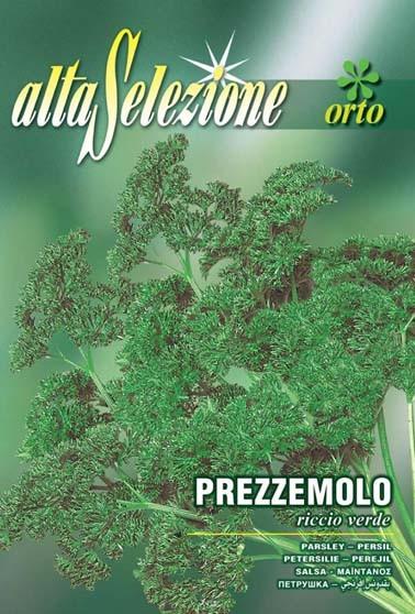 Petersilie riccio verde