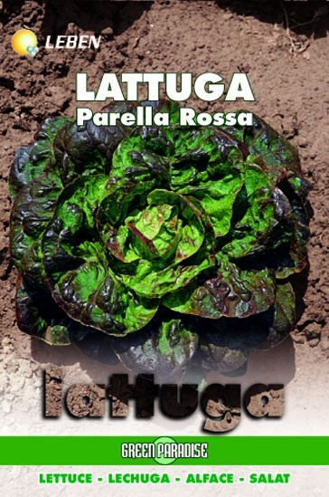 Salat Parella Rossa