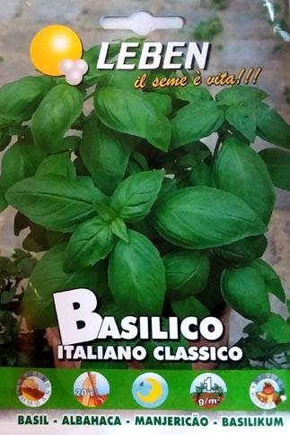Basilikum Classico (Ocimum basilikum)