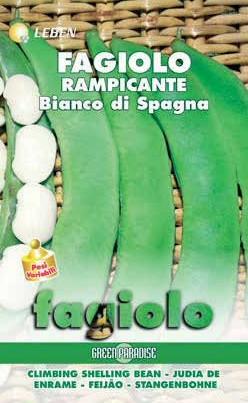 Stangenbohnen Bianco di Spagna (weiße Spanische)