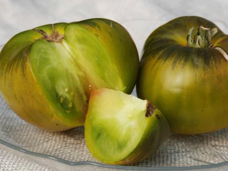 Tomaten Samen Grün