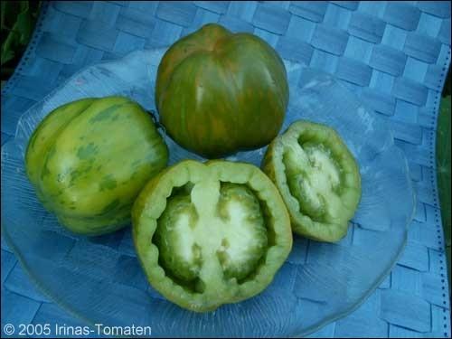 Tomate Green Bell Pepper