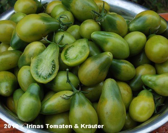 Smaragdbirne (Izumrudnaja Gruscha, Emerald Pear)