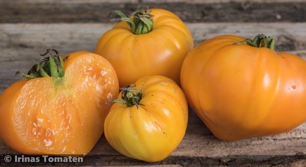 Orangevoje Serdze (Oranges Herz)
