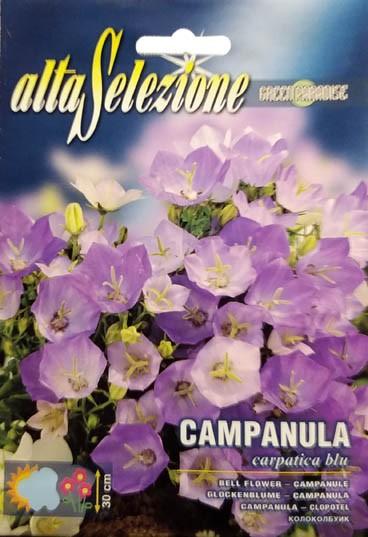 Glockenblume Carpatica Blu
