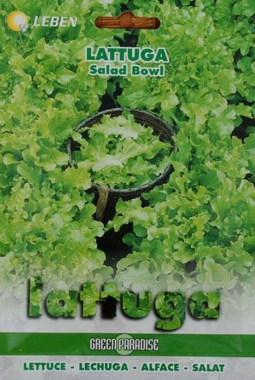 Eichblattsalat Salat Bowl
